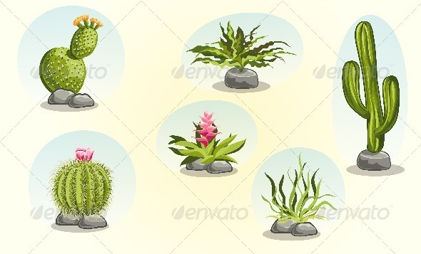 GraphicRiver Collection of Cacti and Desert Plants 8740108