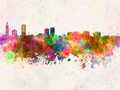 Baton Rouge skyline in watercolor background - PhotoDune Item for Sale