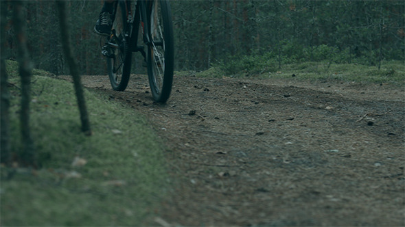 Man Riding a Bike in Dark Forest