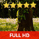Majestic Tree (2-Pack) - VideoHive Item for Sale