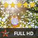 Light Leaks between the Branches - VideoHive Item for Sale