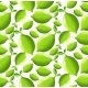 Lime Background - GraphicRiver Item for Sale