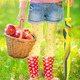 Child holding basket with apples - PhotoDune Item for Sale