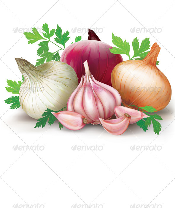 GraphicRiver Onions and Garlic 8752487