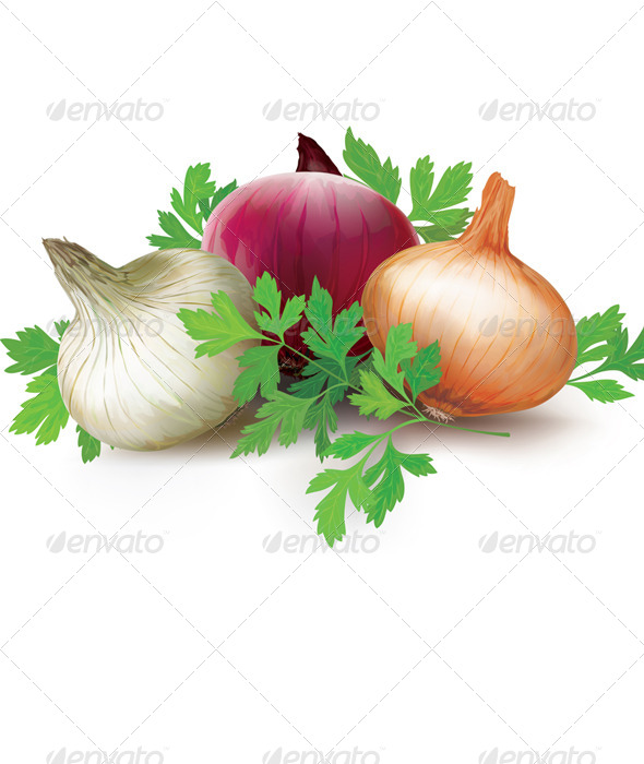 GraphicRiver Onions of Different Colors and Parsley 8752534