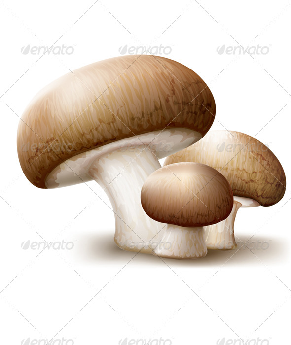 GraphicRiver Champignons Mushrooms 8752610