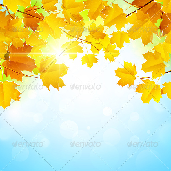 GraphicRiver Autumn Leaves Background 8753236
