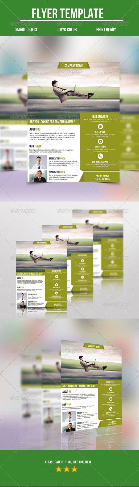 GraphicRiver Corporate Flyer 8754349