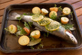 Raw Vegetables And Trout - PhotoDune Item for Sale