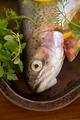 Raw Rainbow Trout - PhotoDune Item for Sale