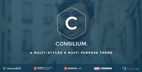 ThemeForest Consilium Multi-Styled & Multi-Purpose Theme 8760992