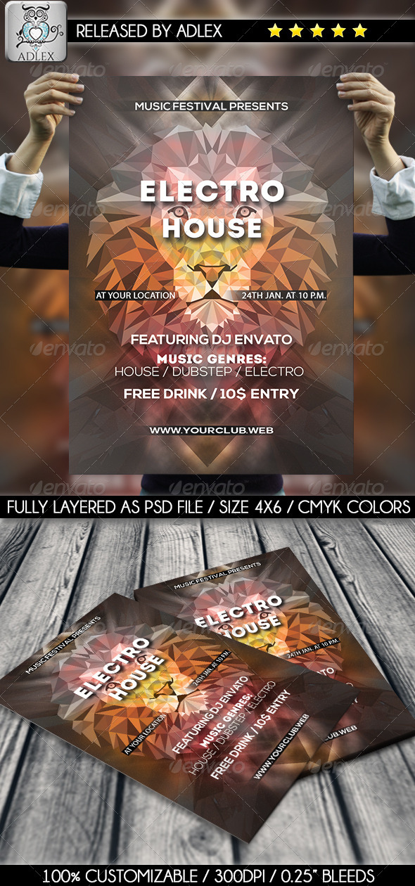 GraphicRiver Minimalistic Lion Flyer 8505195