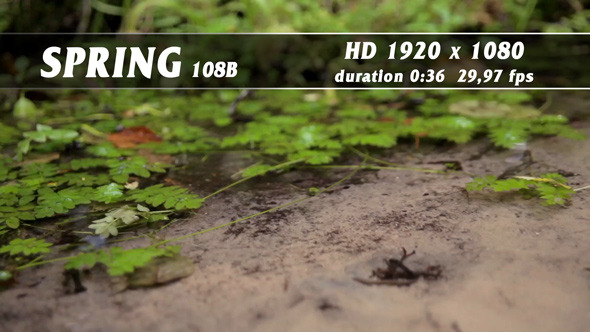 Spring 108B