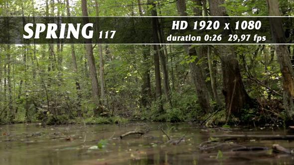 Spring 117