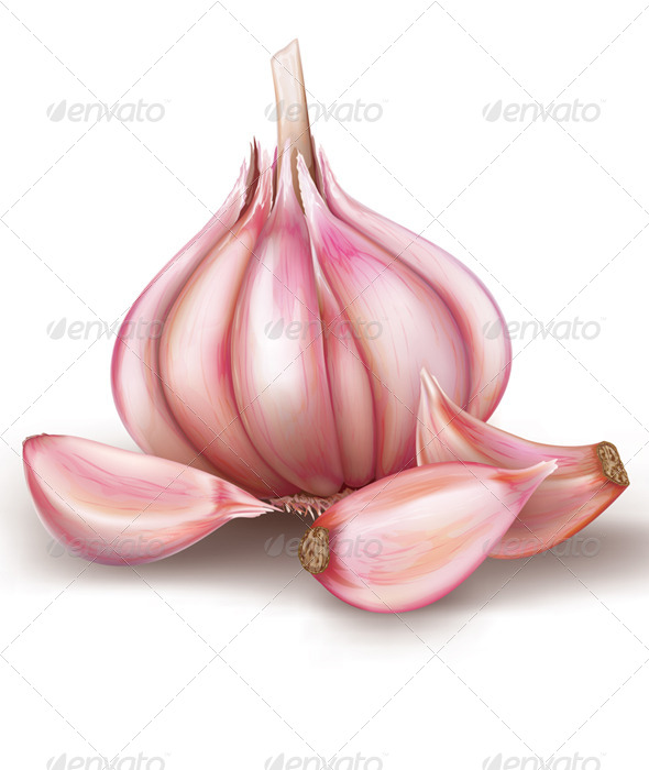 GraphicRiver Garlic 8752625