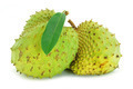 Soursop, Prickly Custard Apple. (Annona muricata L.) Treatment o - PhotoDune Item for Sale