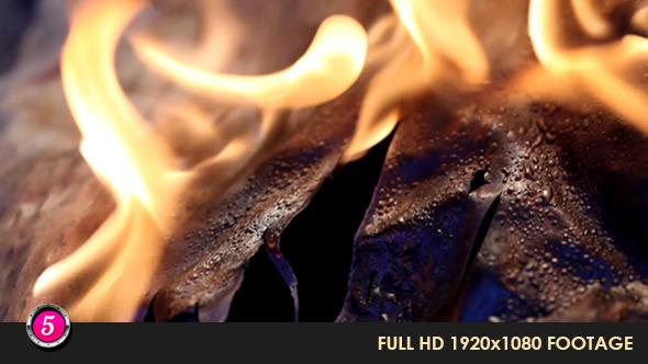 Fire Burns Inflames 29