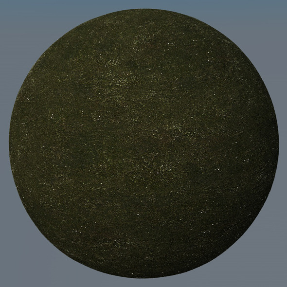 3DOcean Grass Landscape Shader 001 8771112