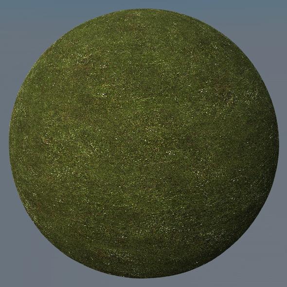 3DOcean Grass Landscape Shader 002 8771410
