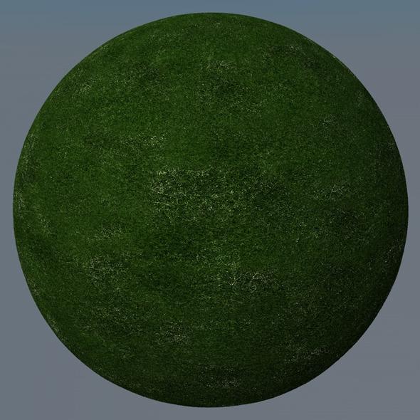 3DOcean Grass Landscape Shader 003 8771561
