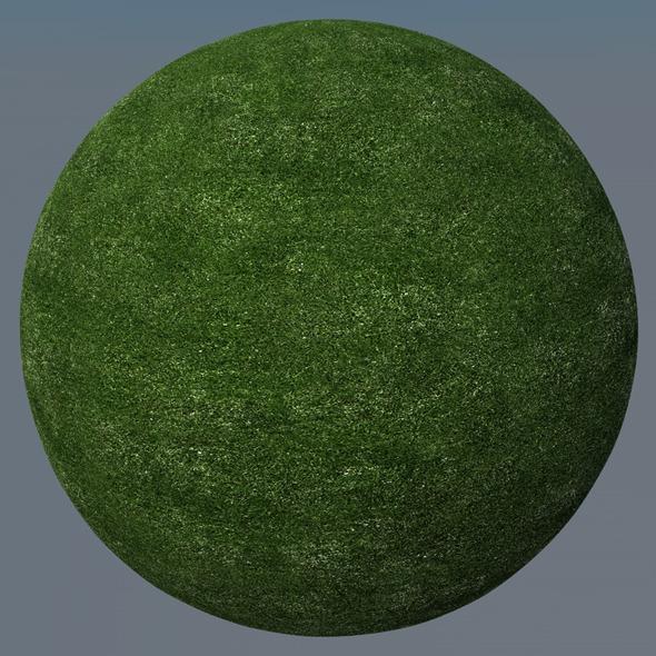 3DOcean Grass Landscape Shader 004 8771920