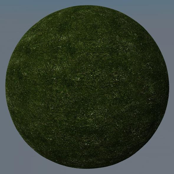 3DOcean Grass Landscape Shader 005 8772254
