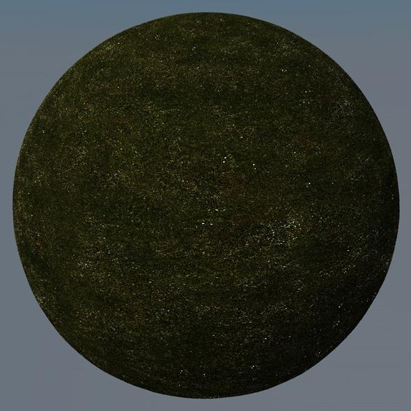 3DOcean Grass Landscape Shader 006 8772804