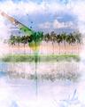 Watercolor Image Of  Landscape - PhotoDune Item for Sale