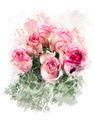 Watercolor Image Of  Roses - PhotoDune Item for Sale