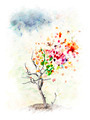 Autumn Tree Concept - PhotoDune Item for Sale