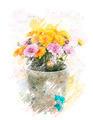 Watercolor Image Of  Autumn Chrysanthemums - PhotoDune Item for Sale