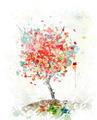 Watercolor Image Of  Autumn Tree - PhotoDune Item for Sale