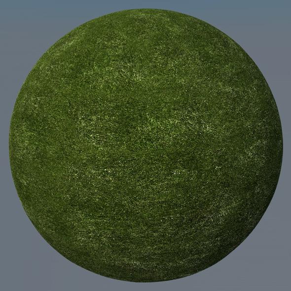 3DOcean Grass Landscape Shader 007 8773114
