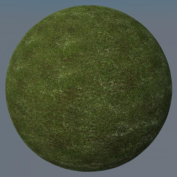 3DOcean Grass Landscape Shader 009 8773719