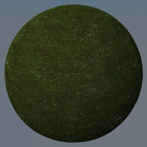 3DOcean Grass Landscape Shader 010 8774097