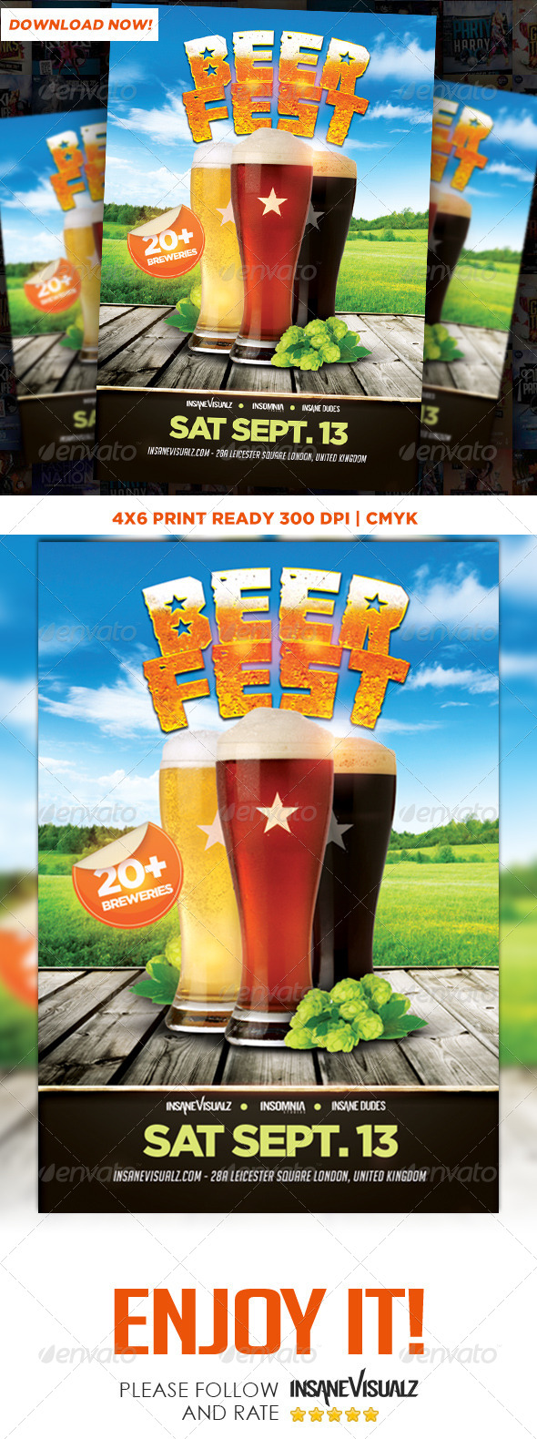 GraphicRiver Beer Fest Flyer 8760370