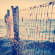 Seaside Nets - PhotoDune Item for Sale