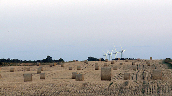 Farmland and windenergy