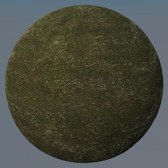3DOcean Grass Landscape Shader 013 8778200