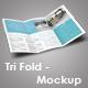 Trifold Brochure Mockup Set - GraphicRiver Item for Sale