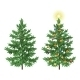 Christmas Spruce Fir Trees with Ornaments - GraphicRiver Item for Sale