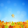Autumn background - PhotoDune Item for Sale