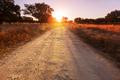 Road in field - PhotoDune Item for Sale