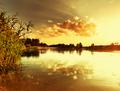 Summer lake - PhotoDune Item for Sale