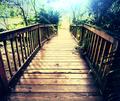 Boardwalk - PhotoDune Item for Sale