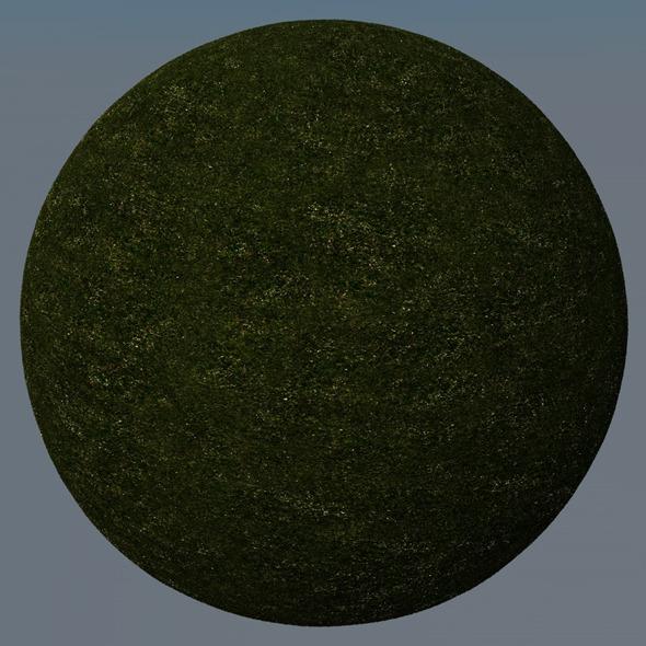 3DOcean Grass Landscape Shader 018 8780922