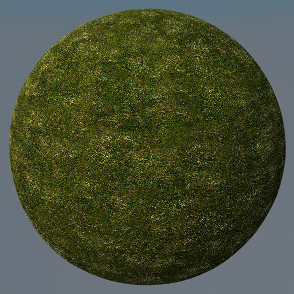 3DOcean Grass Landscape Shader 019 8781028