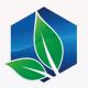 Natural Leaf - GraphicRiver Item for Sale