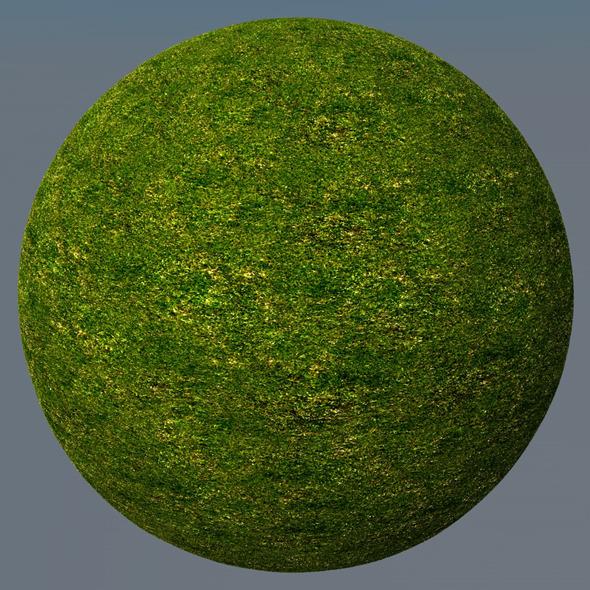 3DOcean Grass Landscape Shader 020 8781441