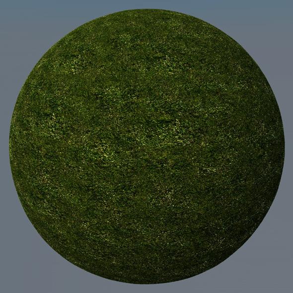 3DOcean Grass Landscape Shader 021 8781724